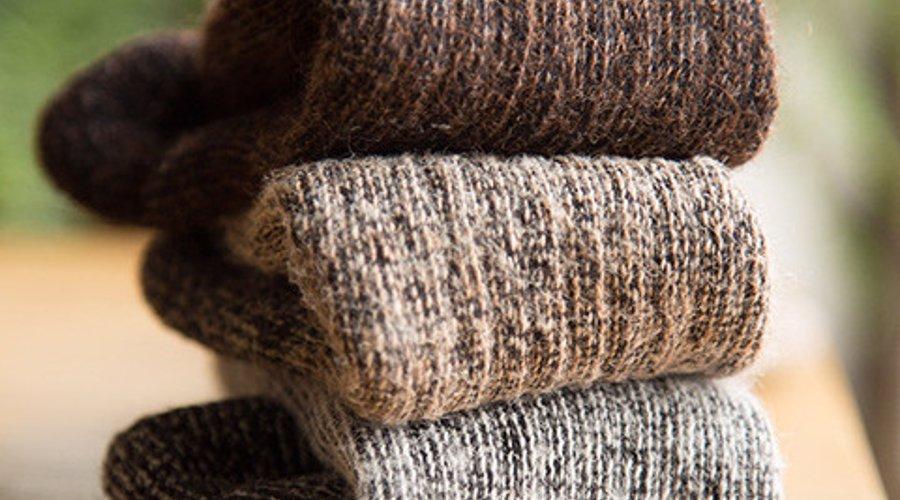 Alpaca Socks Expertly Chosen Gifts