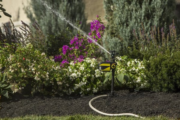 Motion Activated Animal Repellent - Ethically protect your garden from deer, raccoons, rabbits, cats, and more with this motion activated water spray