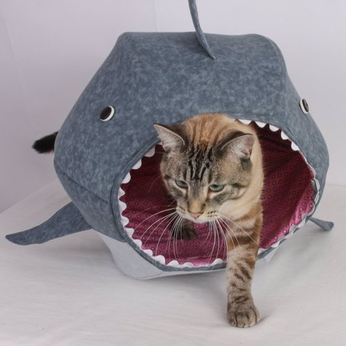 Cat Shark Bed - Unique shark shaped cave for your kitty, to play, hide, sleep and just hang out in