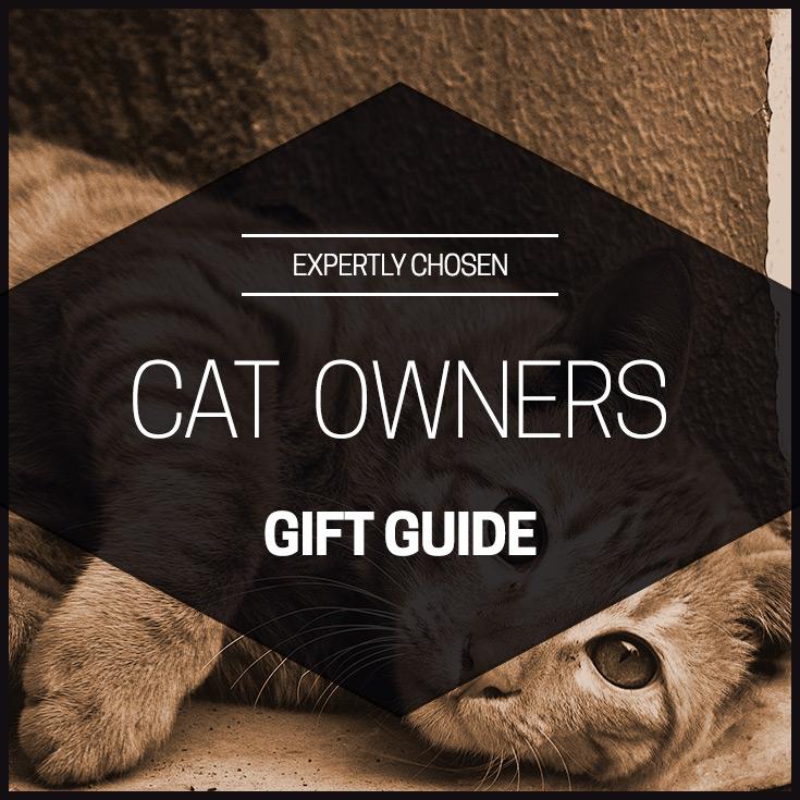3008 feline $150 christmas gift ideas
