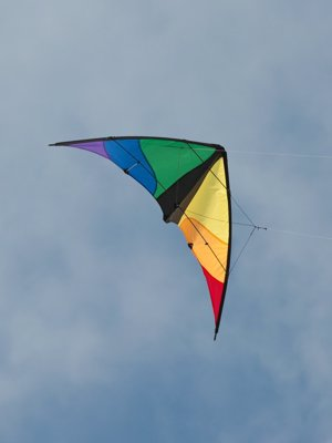 Beginner Level Stunt Kite
