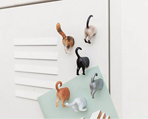 Cat Butt Magnets - A cheeky fridge magnet set for cat fanatics