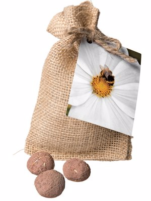 Bee & Pollinator Seed Balls - Grow a bee and pollinator-friendly garden - If you can throw, you can grow!