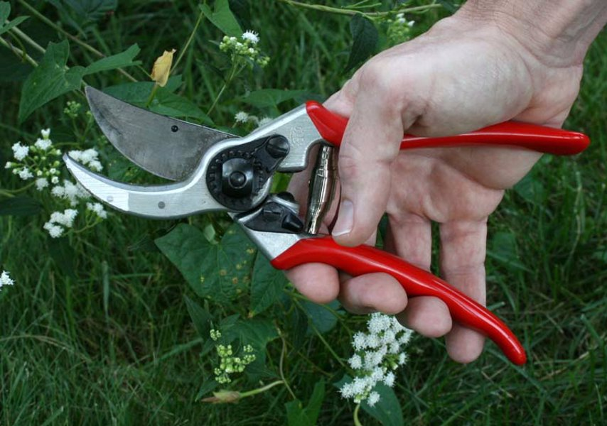 Felco Hand Pruner - The global standard for hand pruners