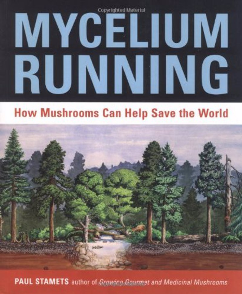 Mycelium Running: How Mushrooms Can Help Save the World - Groundbreaking book about the mycological rescue of the planet