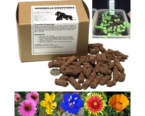 Guerrilla Droppings - Stealthy Pollinator-Friendly Wildflower Gardening Pellets