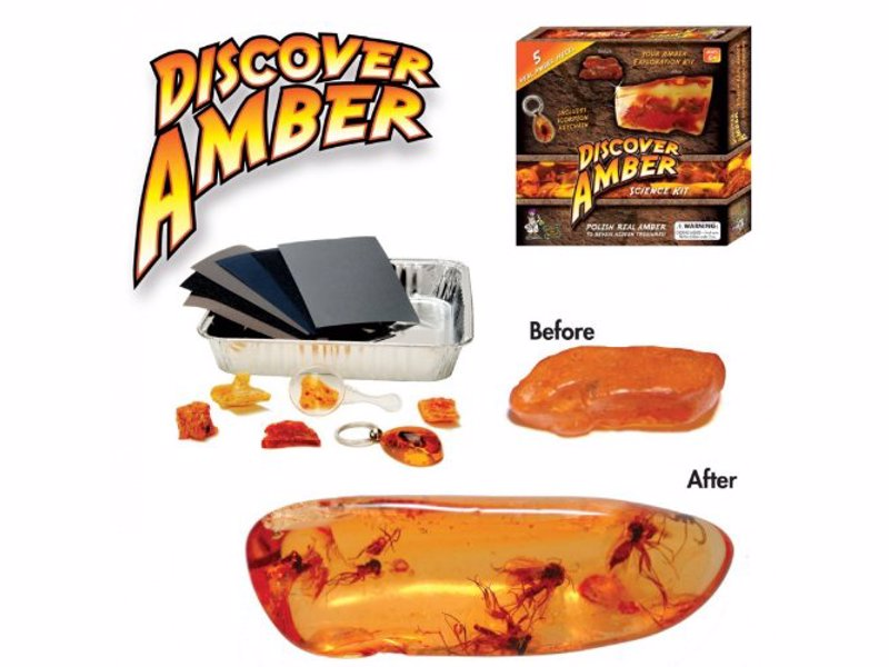 Discover Amber Science Kit - Just like in Jurassic Park, discover 40 million year old bugs trapped in a genuine piece of amber