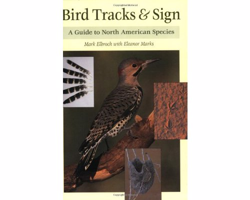 Bird Tracks & Sign Guide - A comprehensive guide to the signs and tracks left by birds in the wild.